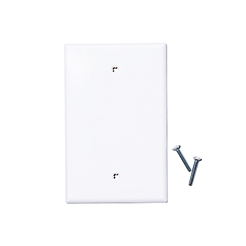 Blank wallplate white